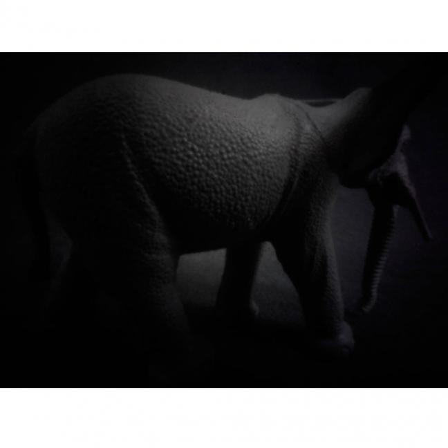 aus der Werkgruppe ZOOPLASTIK, Elefant 2015