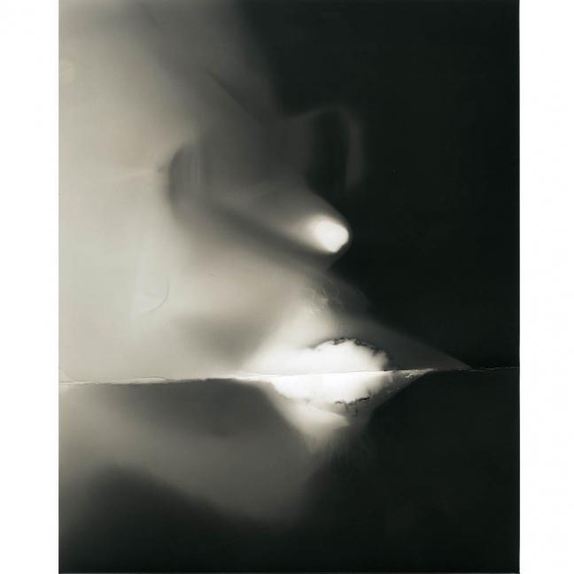 Jürgen Königs Fotogramme